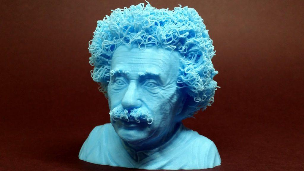 Hairy 3D Prints - Albert Einstein