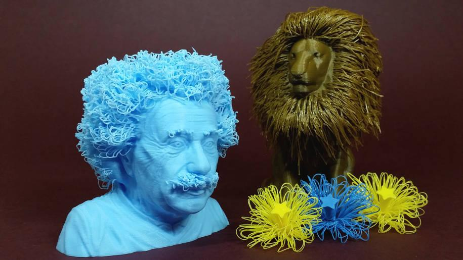 Hairy 3d prints hairy lion and einstein printed using for 3 by 3 prints