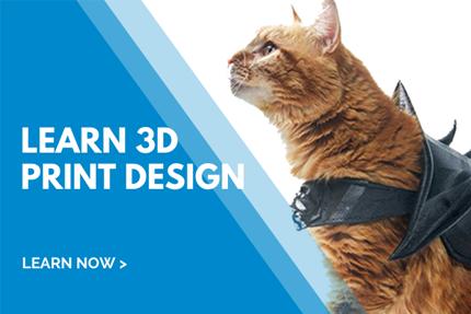 Learn 3D Print Design